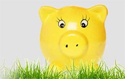 yellow piggy bank behind green grass
